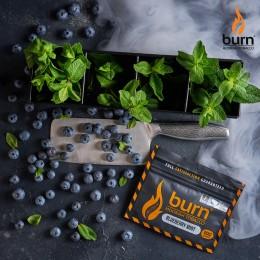 Табак Burn Blueberry Mint (Берн Черника с мятой) 100г