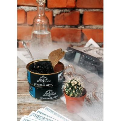 Табак для кальяна Северный Центровой кактус 100г